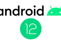 Android 12 beta in India